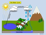 """Water Cycle"" Match,Sort, & Sequence/Label/Cut & Paste/Fla"