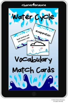 Choices4Science Water Cycle Vocab Lesson Plan Activity (TEKS 4.8B) FREEBIE