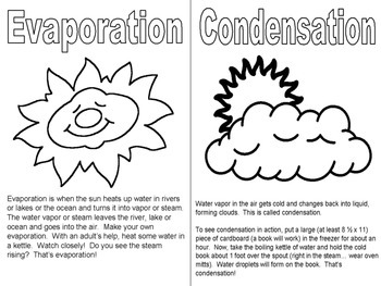 Water Cycle Vocabulary Book