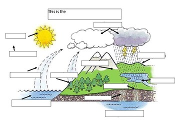 Water Cycle Vocabulary Recording Sheet & Diagram Fill in ...