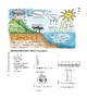 Water Cycle, Weather and Scientific Method Science Study Guide and Test