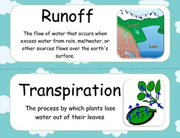 Water Cycle Word/ Vocabulary Wall