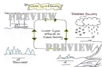 Water Cycle and Salinity - Ocean / Marine Science