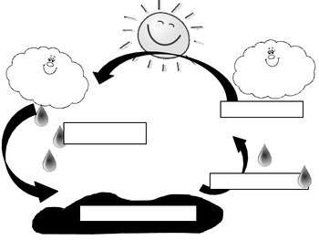 Water Cycle and Weather