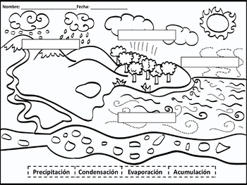 Water Cycle in Spanish