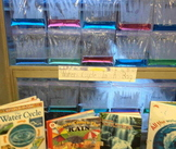 Water Cycle in a Bag Experiment