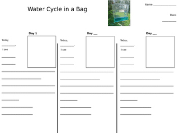 Water Cycle In A Bag Worksheets Teaching Resources Tpt Put the bag in the sink or down on the ground (outside) and step back. water cycle in a bag worksheets