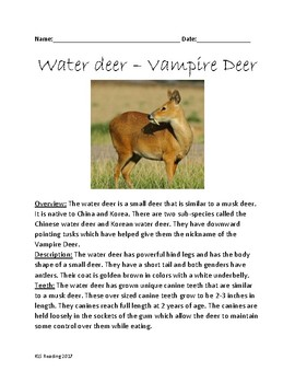 Water Deer - Vampire Deer review lesson article information facts questions
