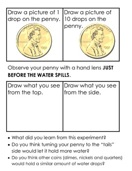 Water Drops on a Penny Introduction Science Process Experiment K-2, 2 levels