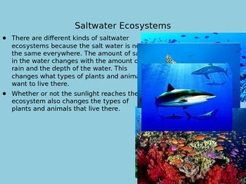 Water Ecosystems