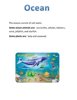 Water Ecosystems Bulletin Board Cards