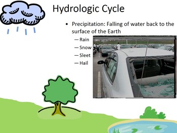 Water (Hydrologic) Cycle PowerPoint (free handout included)