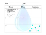 Water Molecules Chart