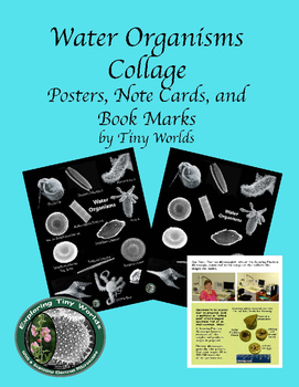 Water Organisms Posters, Note Cards. and Book Marks
