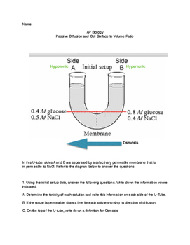 Water Potential and Diffusion Quiz