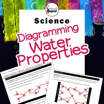 Water Properties - Diagramming Adhesion, Cohesion and Capillary Action