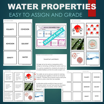 Water Properties (Polarity, Cohesion, Adhesion, Solvent) Sort and Match Activity