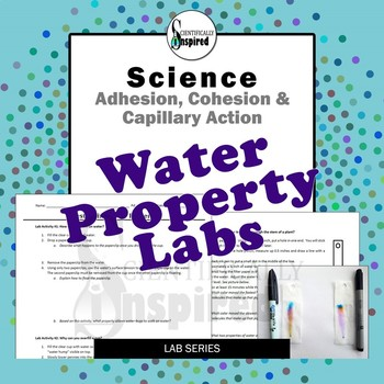 Water Property Investigations - Adhesion, Cohesion and Capillary Action
