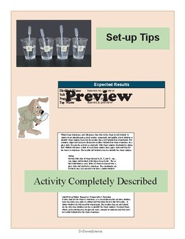 Evaporation Experiment Water Science Activity