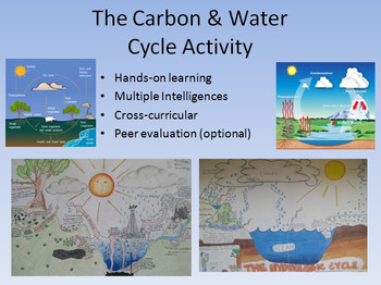 Water and carbon cycle diagram activity bring out their creativity ccuart