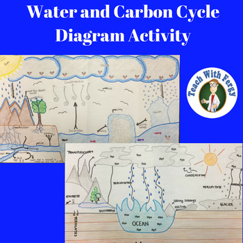 Water And Carbon Cycle Diagram Activity Bring Out Their Creativity