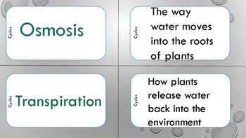 Water and Carbon/Oxygen Cycles - Mix N' Match Cards