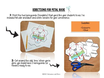 The Water cycle- Interactive Science Notebook foldables