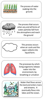 Water cycle vocabulary cut and paste activity