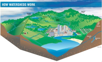Water cycle, water and rivers lesson plans, powerpoints and resources