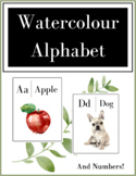 Watercolor Alphabet Posters | Flashcards
