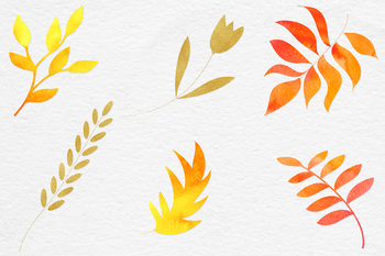 Watercolor And Gold Botanical Clipart