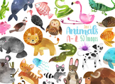 Watercolor Animals A-Z Clipart