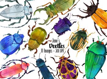 Watercolor Beetles Clipart
