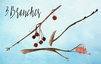 Watercolor Birds Clip Art - Prints