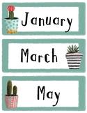 Watercolor Cactus Classroom Decor - Months