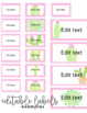 Watercolor Cactus Teacher Toolbox Labels | Editable