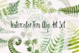 Watercolor Fern Clip Art Set