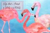 Watercolor Flamingo Clip Art