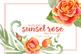 Watercolor Floral Clip Art - Summer Sunset Rose