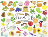 Watercolor Green Life Clipart, Nature Clipart, Nature Grap