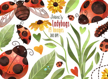 Watercolor Ladybug Clipart