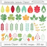 Watercolor Leaves Clip Art Autumn Leaf Clipart Silhouette