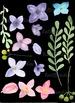 Watercolor Lilac Clip Art - Wreath - Laurels