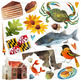 Watercolor Maryland Clipart