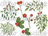 Watercolor Mistletoe and Holly Digital Clip Art Set