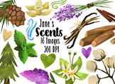 Watercolor Nature Scents Clipart
