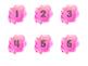 Watercolor Numbers (Pink)