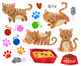 Watercolor Orange Cats Clipart