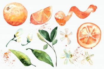 Watercolor Oranges Clipart + Wreath