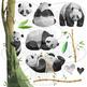 Watercolor Pandas Clipart